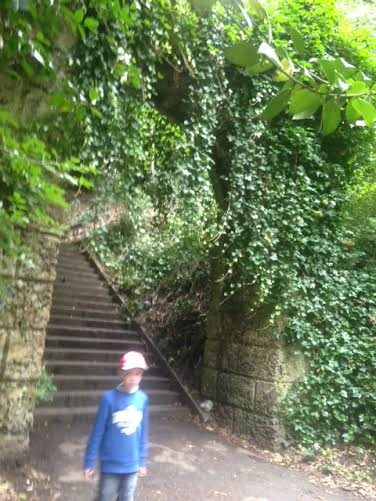 The 161 Armley Park steps are used by runners each week
