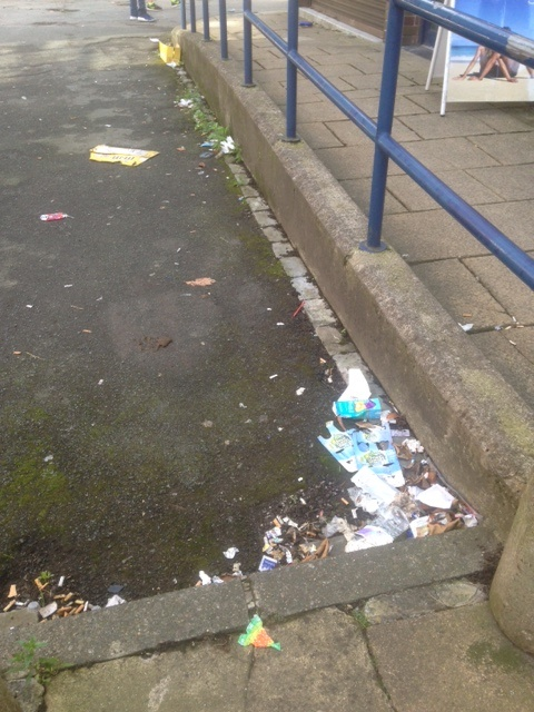 pudsey litter