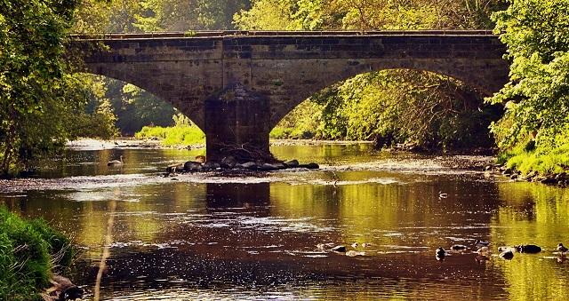 calverley bridge