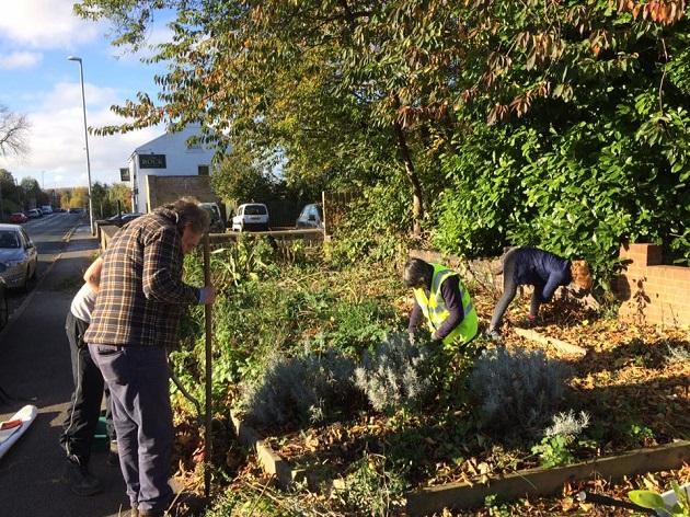 newlay garden during