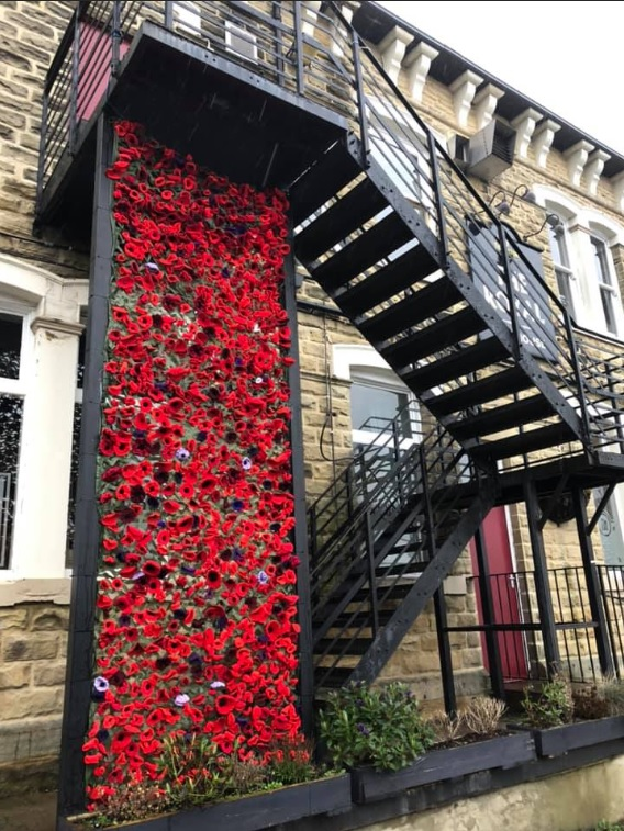 pudsey poppies 8