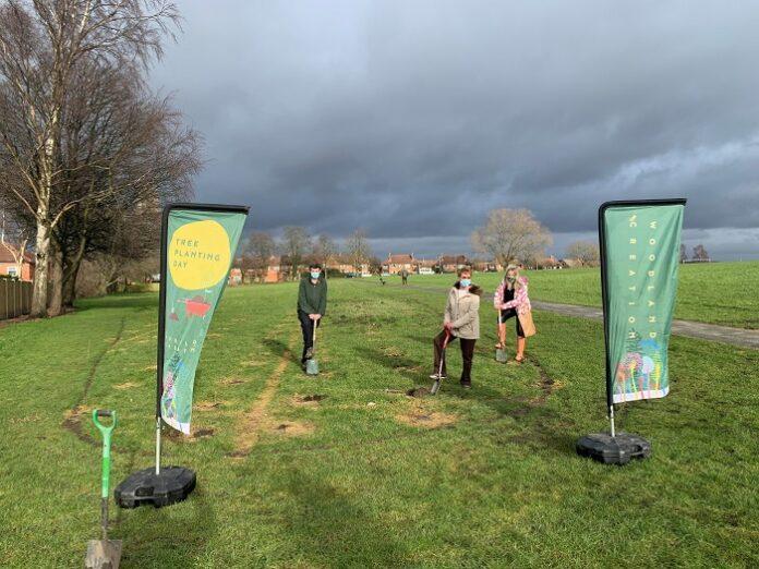 bramley tree planting stanningley park