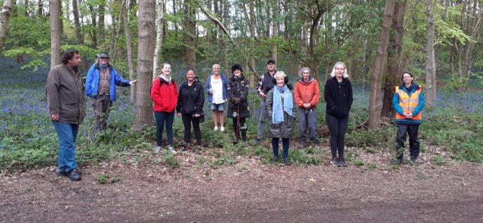 hollybush walking groups